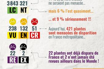 Infographie Liste rouge